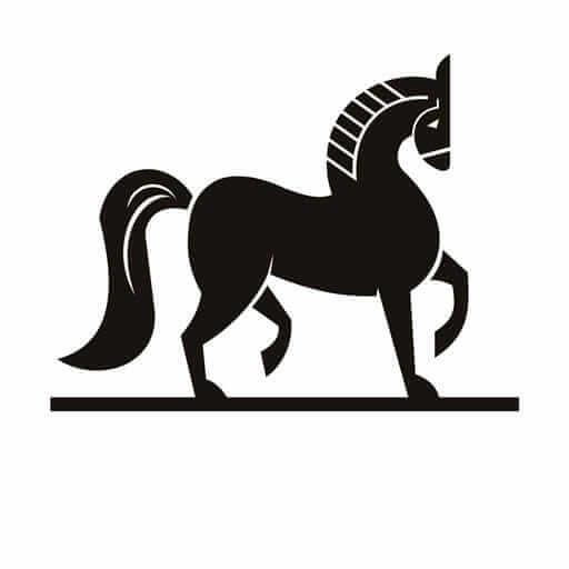 Icona Museo del Cavallino della Giara