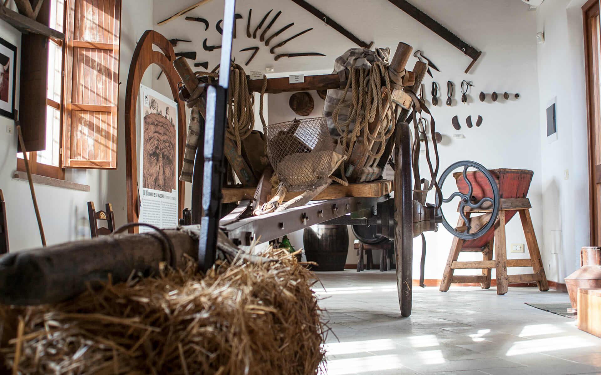 Sezione etnografica del museo col grande carro